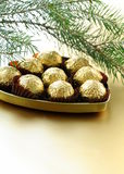 Chocolate truffles in a gift box royalty free stock image