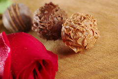 Chocolate Truffles with a Red Rose Royalty Free Stock Images