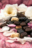 Chocolate truffles and rose petals 02 Royalty Free Stock Photo
