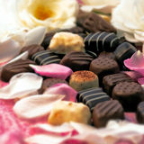 Chocolate truffles and rose petals Stock Image