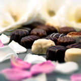 Chocolate truffles and rose petals romantic close up shot Stock Images