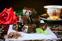 Chocolate Turkish delight Stock Image