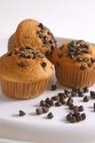 Chocolate-Vanilla Cupcake Stock Image