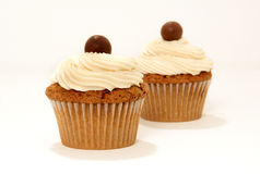 Chocolate vanilla cupcakes Stock Photos