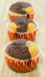 Chocolate and vanilla muffins Stock Image