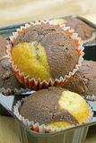 Chocolate and vanilla muffins Stock Photography
