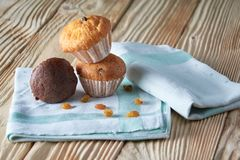 Chocolate and vanilla muffins with nuts on wooden background, selective focus royalty free stock images