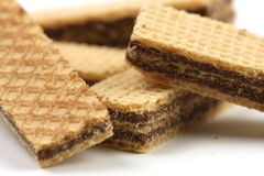 Chocolate wafers Stock Image