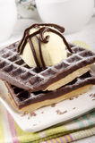 Chocolate waffle with powdered sugar Stock Photos