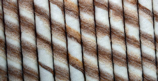 Chocolate waffle rolls Stock Image