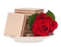 Chocolate waffles Royalty Free Stock Photos