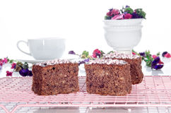 Chocolate walnut cake on a cooling rack Stock Images