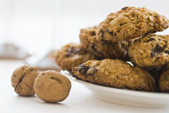 Chocolate Walnut Cookies. Healthy cookies made of chocolate chips, walnuts and outmeal Stock Photos