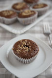 Chocolate Walnut Muffins Stock Images