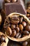 Chocolate and walnuts Royalty Free Stock Image