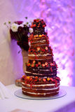 Chocolate wedding cake decorated with fruits Stock Photos