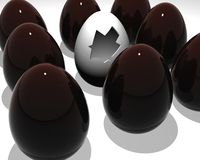 Chocolate and white easter eggs Stock Image