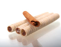 Chocolategaufre  with sticks of cinnamon Royalty Free Stock Photos