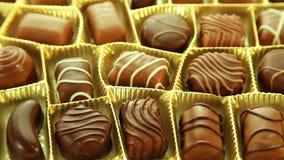 Chocolates box, tasty pralines background stock video