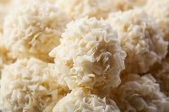 Chocolates brancos Handmade Imagem de Stock Royalty Free