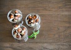 Chocolates das conchas do mar imagem de stock