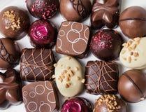 Chocolates gourmet Imagem de Stock
