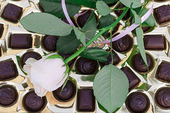 Chocolates and rose Stock Photos