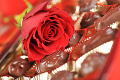 Chocolates and rose on red Royalty Free Stock Photo