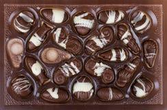 Chocolates. Shaped as sea food Stock Photography
