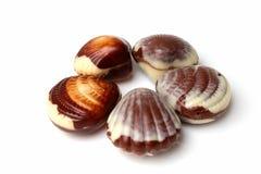 Chocolats belges d'interpréteur de commandes interactif de mer Image libre de droits