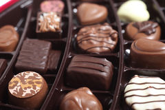 Chocolats de luxe dans un plateau Photo stock