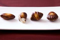 Chocolats fins images libres de droits