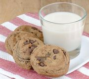 Chocoloate chip and pecan cookies Stock Images