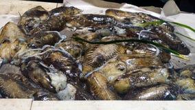 Chocos frescos em um mercado em Itália Fotos de Stock