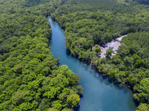 Choctawhatchee River - Morrison Springs Stock Photos