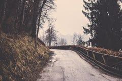 Chodniczek obracać z lewej strony z drzewną linią w Krwawiący Zdjęcie Stock