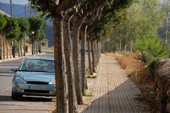Chodniczek z drzewami obrazy stock
