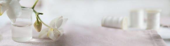 Chodnikowiec, sztandar dla miejsce projekta Uszycie, handmade Zwitki orchidea i nić horyzontalny format, przestrzeń dla teksta Obraz Stock