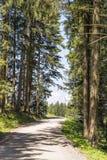 Chodząca ścieżka Blomberg Zdjęcie Stock