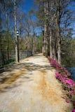 Chodząca ścieżka przy Łabędzimi Jeziornymi Irysowymi ogródami, Sumter, SC Obraz Stock