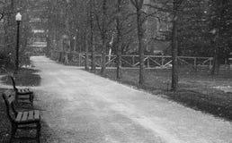 Chodząca ścieżka w Halifax jawnych ogródach podczas śnieżnych podmuchów fotografia royalty free