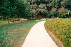 Chodząca ścieżka w kraju parku Obrazy Royalty Free