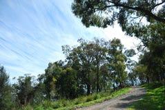 Chodząca ścieżka w naturze z chmurami Fotografia Royalty Free