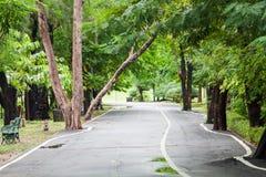 Chodząca ścieżka w parku po deszczu Zdjęcie Stock