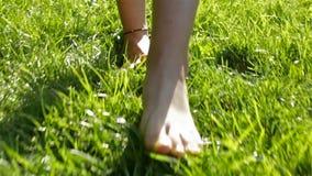 Chodzący bosy w trawie - backlight, zbliżenie zdjęcie wideo