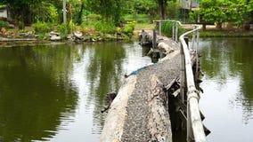 Chodzący most przez rzekę zbiory wideo