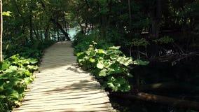 Chodzący przez halny lasowego blisko jezioro, Widok od Plitvice jezior zbiory