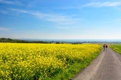 Chodzący w polach w kierunku, Audresselles, Północny pas de Calais, Francja Zdjęcia Royalty Free