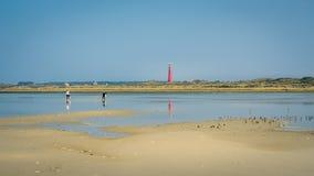 Chodzący wzdłuż Schiermonnikoog linii brzegowej na summerday holandie Fotografia Stock