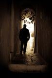 Chodzący samotny Zdjęcie Stock